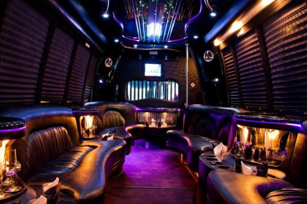 15 person party bus rental McKinney
