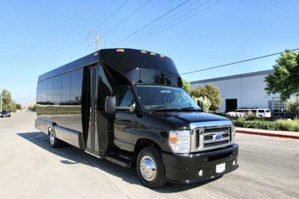 20 passenger party bus McKinney